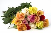 image of one dozen roses  - bouquet of a dozen long stemmed mixed roses the signifies love beauty compassion affection caring giving - JPG