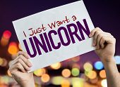 I Just Want a Unicorn placard with night lights on background poster