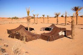 stock photo of sahara desert  - bedouin camp in the sahara desert morocco  - JPG