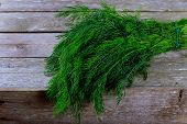 Dill Bunch On Wooden Table Background. Fresh Dill On Wooden Plank Background. Organic Dill Closeup O poster