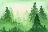 Green Beautiful Watercolor Background With Coniferous Fir Forest In Sun Lights. Mysterious Pine Tree poster