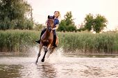 A Young Girl Riding A Horse On A Shallow Lake. A Horse Runs On Water At Sunset. Care And Walk With T poster