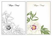 White Peony. Coloring Page For The Adult Coloring Book. With Colored Sample. Colored And Outline Des poster