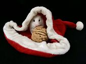A Hamster In A New Years Hat. White Hamster In A Red Hat With A Nut. A Mouse Sits Inside A Hat. Lit poster
