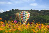 Hot Air Balloon And Cosmos Field Over Bright Sky. poster