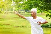 picture of tai-chi  - Asian senior man practicing tai chi in the park - JPG