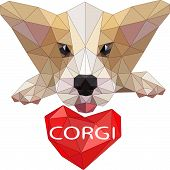 Corgi Dog Vector Cartoon Illustration. Cute Friendly Welsh Corgi Puppy Sitting, Smiling With Tongue  poster