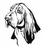 Decorative Contour Outline Portrait Of Dog Basset Hound Looking In Profile, Vector Illustration In B poster
