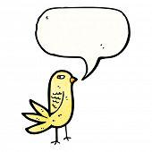 foto of angry bird  - angry cartoon bird - JPG