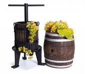pic of wine-press  - Traditional manual grape pressing utensil and barrel with white grapes - JPG