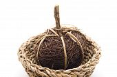 Straw ball with phloem basket