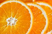 Macro View Of Orange