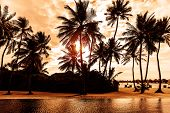 Tropical beach on sunset, beautiful postcard with palm trees silhouette on cloudy sky background, lu