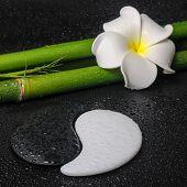 foto of frangipani  - spa concept of tropical frangipani flower symbol Yin Yang and natural bamboo on zen basalt stones with drops closeup - JPG