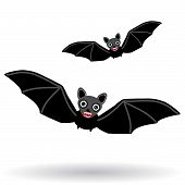 stock photo of vampire bat  - Funny vampire bat on a white background - JPG
