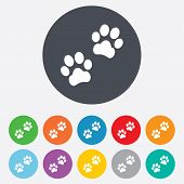 pic of paw  - Paw sign icon - JPG