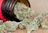 image of medical marijuana  - Close up photo of dry medical marijuana buds - JPG