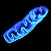 picture of membrane  - Mitochondria are unusual organelles - JPG