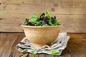 foto of iceberg lettuce  - mix salad  - JPG
