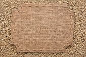 picture of stitches  - Figured frame with burlap and stitches with place for your text lying on rye grains as a background - JPG