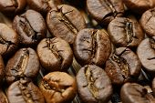 picture of spit-roast  - Roasted coffee beans macro shot with extended depth of field under soft light - JPG