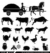 image of chicken  - Set of various farm animal icons - JPG