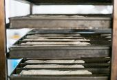 picture of bread rolls  - A tray rack of soft roll fresh dough being taken to bread ovens at the local bakery - JPG