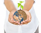 foto of save earth  - Woman hands holding tree planting on globe warming Save the Earth Concept  - JPG