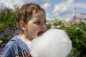 picture of candy cotton  - Child licks cotton candy in the park - JPG