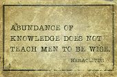 stock photo of wise  - Abundance of knowledge does not teach men to be wise  - JPG