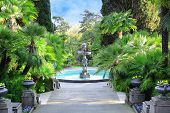 image of fountain grass  - Walkway in a beautiful Park with Palms thuyas and fountain  - JPG