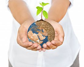 stock photo of save earth  - Woman hands holding tree planting on globe warming Save the Earth Concept  - JPG