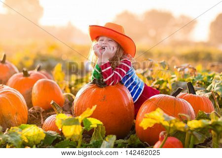poster of Little girl picking pumpkins on Halloween pumpkin patch. Child playing in field of squash. Kids pick ripe vegetables on a farm in Thanksgiving holiday season. Family with children having fun in autumn