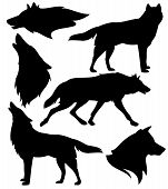Wolf Silhouette Set - Black Vector Design Of Running, Howling And Standing Animals poster
