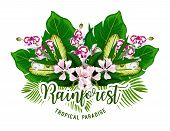 Tropical Paradise Holiday And Summer Vacation Poster With Exotic Palm Leaf And Flower. Orchid, Monst poster
