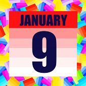 January 9 Icon. For Planning Important Day. Banner For Holidays And Special Days. Ninth Of January.  poster
