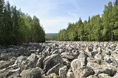 The Stone River. Trees Grow Along The River. Mountains In The Background. The Rocks Of The Mountain  poster