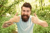 Summer Fun. Bearded Guy In Park Forest. Bearded Hipster. Crazy Bearded Man In Natural Environment. H poster
