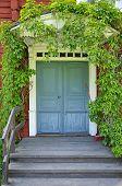 stock photo of front door  - Picturesque blue door of a home covered by plants - JPG