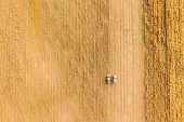 Aerial View Of Rural Landscape. Combine Harvester And Truck Working Together In Field, Collects Seed poster