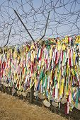 Ribbons left by visitors with hope for unification in Imjingak Park in Paju, South Korea near the DM
