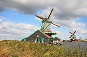 Rural landscape in Holland. Ethnographic rural museum - rural constructions and windmills - a countr