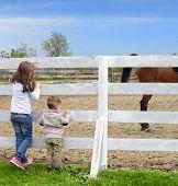 pic of baby cowboy  - Pre - JPG
