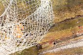 stock photo of fishnet  - Fishing equipment. Closeup of old net. White fishnet on wooden background outdoor. ** Note: Shallow depth of field - JPG