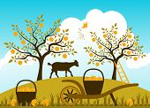 picture of hand-barrow  - vector hand barrow with baskets of apples in apple orchard - JPG