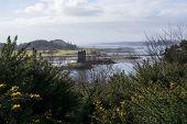 ������, ������: Castle Stalker Scottland