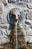 picture of lions-head  - Street faucet with a lion head with a stream of fresh water coming out of it - JPG
