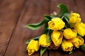 picture of yellow buds  - Big bouquet of beautiful yellow flowers - JPG