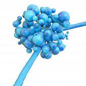 foto of fungus  - Blue Candida fungus macro shot on white background  - JPG