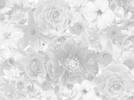 stock photo of sympathy  - floral mourning background in black and white - JPG